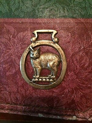 Vintage Horse Brass *Standing Cat* Medallion