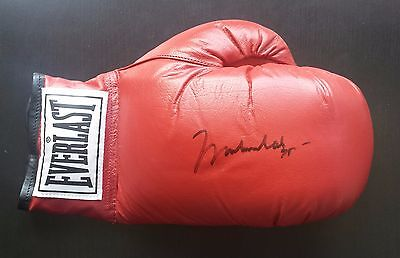 MUHAMMAD ALI beautifully signed boxing glove autographed Cassius Clay LOA