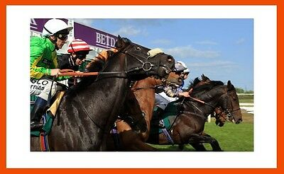 Horse Racing System | Turn £50 into £2,758.82 | Make Money Online |