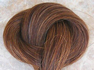 Bulk HORSEHAIR Chestnut brown mix horse hair crafts, jewelry, tails  1 ounce