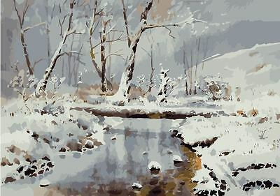 Framed Paint by Number Kit Cold Winter Frozen Creek DIY Painting DZ7146