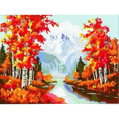 Oil Painting By Numbers Cotton Cloth DIY Digital Hand Painted Home Wall Decor AU