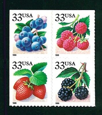 US Scott # 3294, 3295, 3296, & 3297 Fruit Berries Block of 4 / 1999 MNH BLK Pane