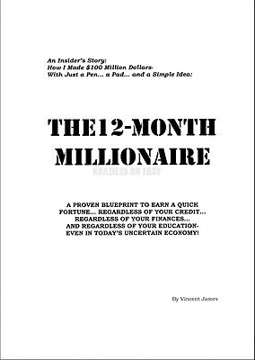 12 Month Millionaire - Vincent James - Original 300+