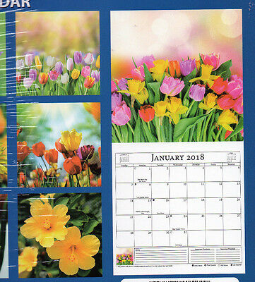 2018 WALL LARGE FLOWERS BRIGHT COLORFUL Garden Blooms 12X12 ROSES Tulips PINK