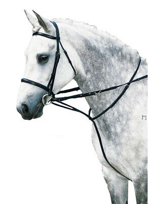 NEW Market Harborough Horse Riding Bridle Training Schooling lung FULL FREE POST