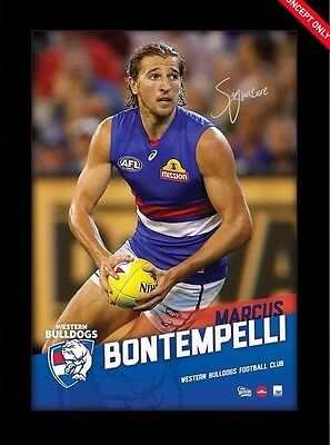 Marcus Bontempelli Western Bulldogs Hand Signed Official Afl Vertiramic Print