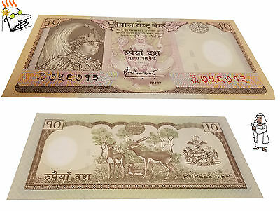 Nepal 10 Rupees polymer Note