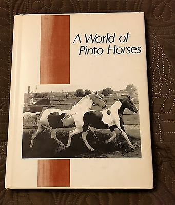 A World Of Pinto Horses ~ Vintage 1970 Beautifully Illustrated Horse Book