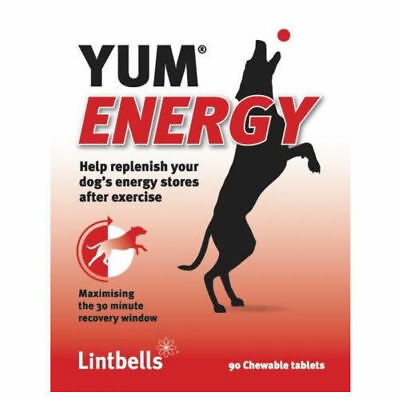 Lintbells Yum Energy Supplement 90 Chewable Tablets Restores Dogs Energy Stores
