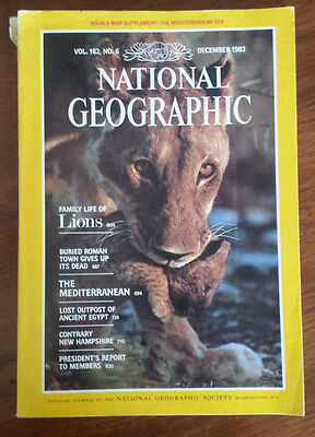 """National Geographic - December, 1982 Back Issue """"Family Life of Lions"""""""