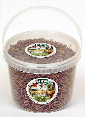 Supa Dried Mealworms Wild Bird Food Robin Blackbird Thrush Feed 3000ml 3 Litre