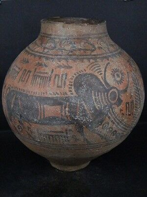 Ancient Huge Size Teracotta Painted Pot With Bulls Indus Valley 2500 BC   #Ik451