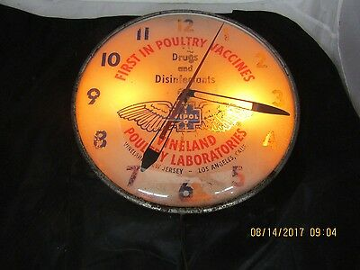 PAM CLOCK VIDOL, Lighted Sign WalL CLOCK VINELAND POUTRY LABORATORIES
