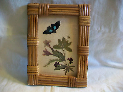 Bamboo Framed Butterfly Picture w/ Dried Flowers & Leaves