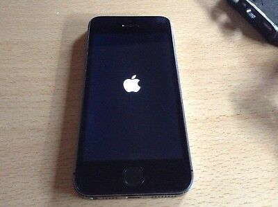 Iphone 5S Space Gray 16Gb mit Hülle