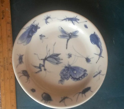China  -   Lovely Insect - Bug Plate  -  Old...  And Nice