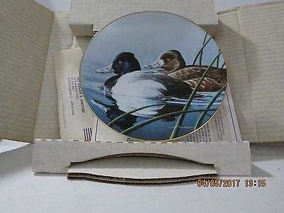 Bradford Exchange Collectible Plate W L George Duck Stamp Lesser Scaup 1990 p2