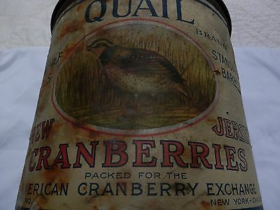 Vintage Antique Tin, Eatmor Cranberries Nj,large,circa 1920S,nice,quail Brand.