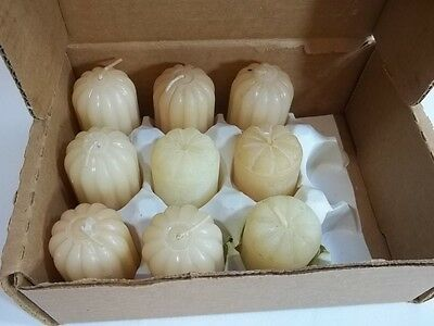 Home Interiors Vanilla Votive Candes Lot of 6 plus 3 other Vanilla