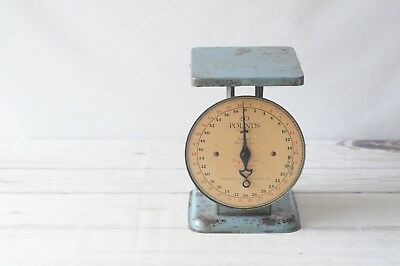 Rare Antique 1912 American Family Counter Scale Blue Kitchen Scale