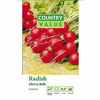 Redish Seed.sydney Fast Delivery