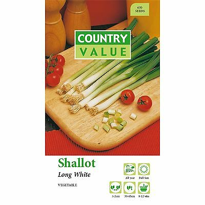 Shallots Seeds.vegetables Seeds, Plants Seeds Flowers,gardens,easy To Grow Aus