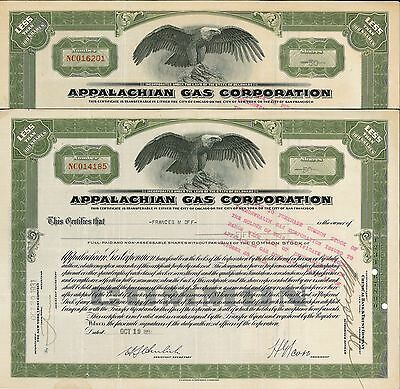 Appalachian Gas Corporation > 1931 old stock certificate share