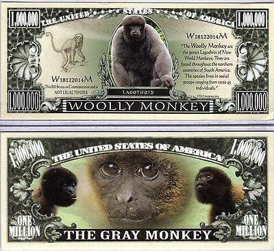 The Wooly Monkey - Atelidae Series Million Dollar Novelty Money
