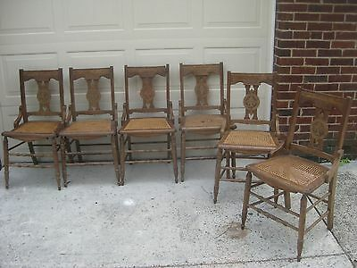 East Lake carved Iris dining chairs