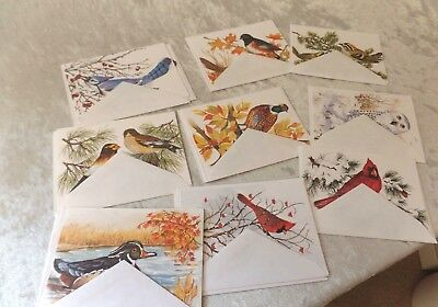 Greeting Cards USA Made by John Cornacchio Birds 14 Blank Cards/Envelopes