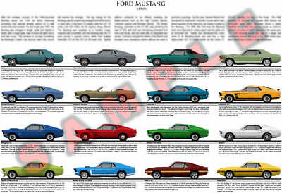 1969 Ford Mustang model chart poster Grande GT Mach 1 Boss 302 429 Shelby GT 500