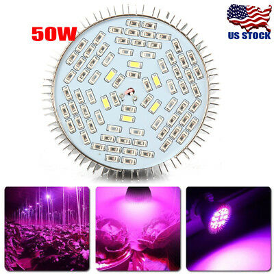50W E27 Full Spectrum LED Grow light Grow Lamp Bulb for Flower Plant Hydroponics