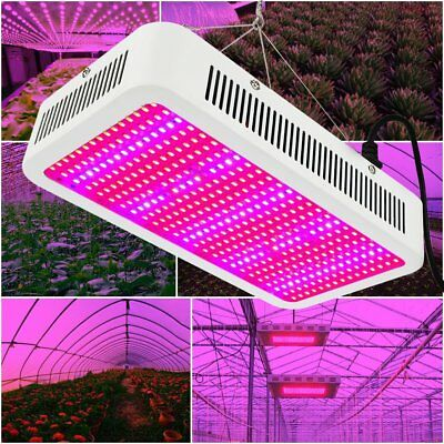 30W-800W LED Pflanzenleuchte Pflanze Lampe Licht Wachstumslampe Grow Light Panel