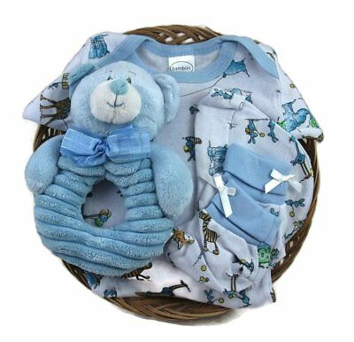 Sunshine Gift Baskets - Baby Shower Gift Basket for a Boy. Includes a Bambini a