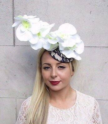 Navy Blue White Cream Orchid Flower Fascinator Hat Hair Clip Races Wedding 3803