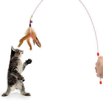 Kitten Cat Pet Toy Wire Chaser Wand Teaser Feather With Bell Beads Play Fun ~Y