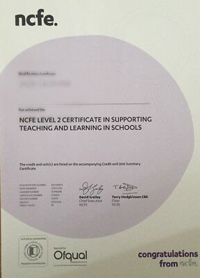 COURSEWORK NCFE Supporting Teaching And Learning In Schools Level 2