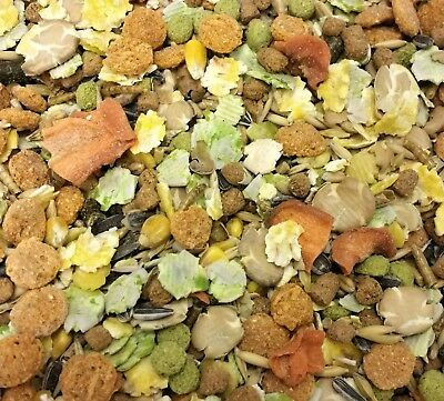 SUPREME RAT & MOUSE - Pet Food Animal Feed Blend Meal bp Sunflower Seed Mealworm