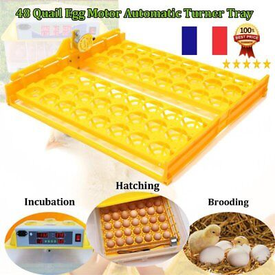 BEST DIY 48 Eggs Bird Incubator Chicken Egg Rack Tray Automatic Egg IncubatorYH