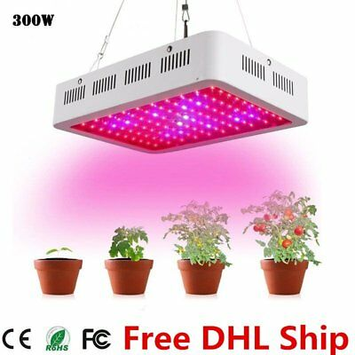 300W Dimmable Dimmer LED Grow Light Full Spectrum Hydroponic For Veg Flower Weed