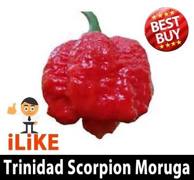 Trinidad Scorpion Moruga Pepper Seeds Red x 5 The Worlds Second Hottest Chiili