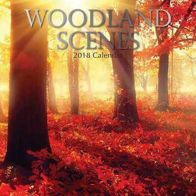 Woodland Scenes - 2018 Premium Square Wall Calendar 16 Months New Year Xmas Gift