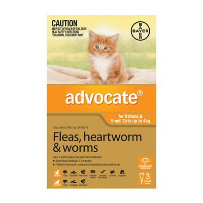 Advocate for Kittens & Small Cats up to 4kg (3 pipettes) Cat Cats Pet Pets