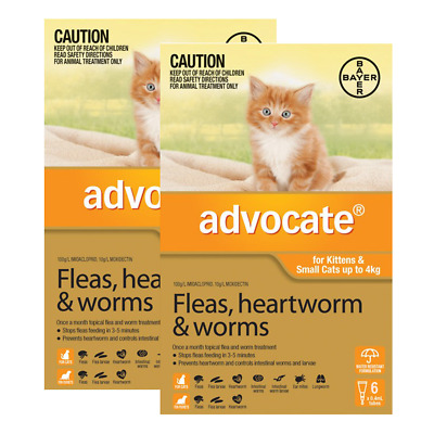 Advocate for Kittens & Small Cats up to 4kg (12 pipettes) Cat Cats Pet Pets