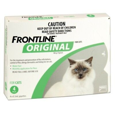 Frontline Original 4pk for Cats  Pet Pets Cat Cats