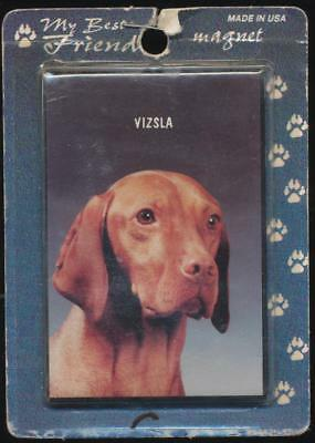 My Best Friend Hungarian or Magyar Vizsla Dog Refrigerator Magnet NOS
