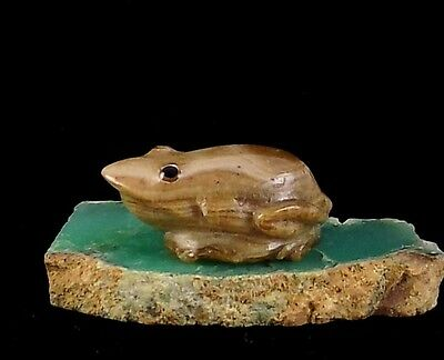 ZMT Small Zuni Frog Fetish by Ricky Laahty - Natural Onyx Stone
