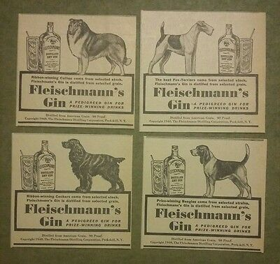 1940 Fleischmanns Gin Dog Ads Beagle Collies Fox Terrier Cocker