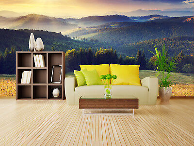 3D Sunrise Forest 75  Wall Paper Murals Wall Print Wall Wallpaper Mural AU Lemon